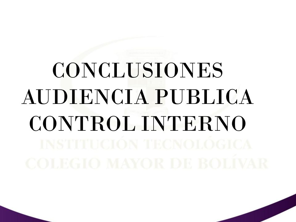 CONCLUSIONES AUDIENCIA PUBLICA