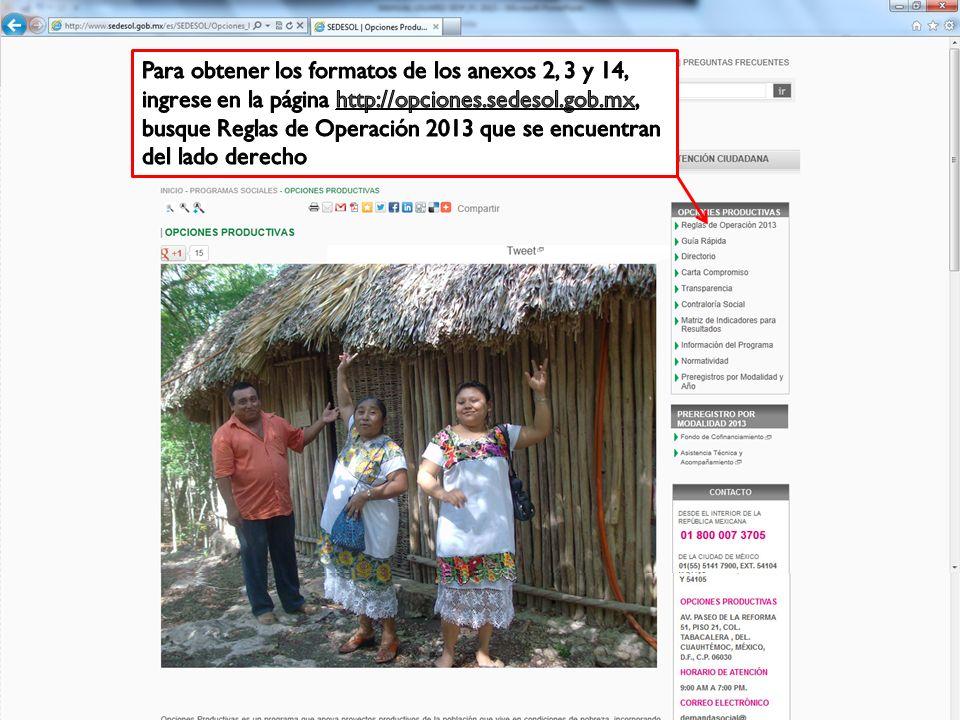 Para obtener los formatos de los anexos 2, 3 y 14, ingrese en la página http://opciones.sedesol.gob.mx, busque Reglas de Operación 2013 que se encuentran del lado derecho