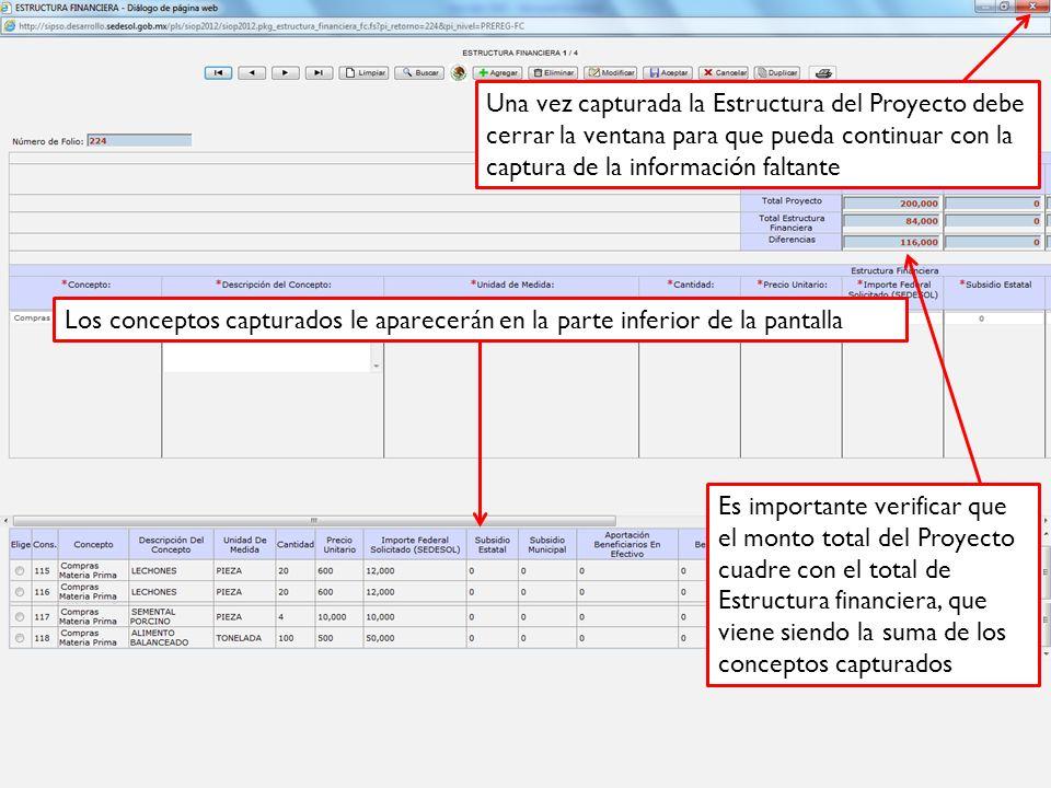 Una vez capturada la Estructura del Proyecto debe cerrar la ventana para que pueda continuar con la captura de la información faltante