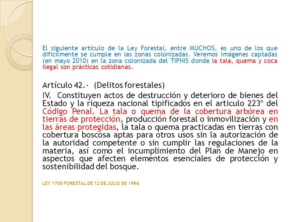 Artículo 42.- (Delitos forestales)
