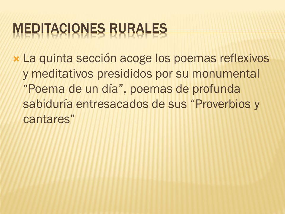 Meditaciones rurales