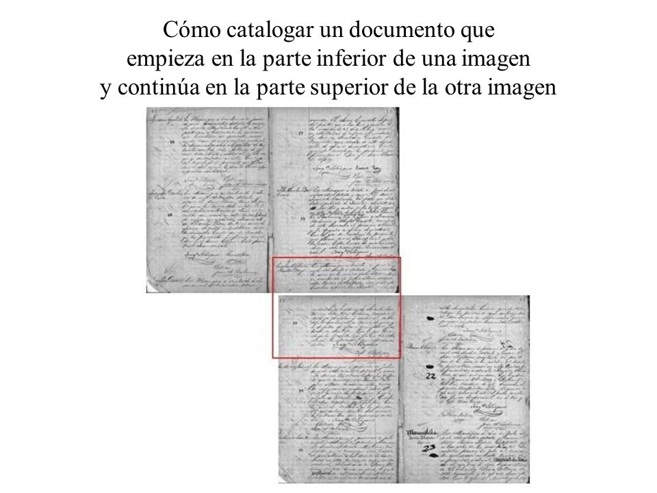 Cómo catalogar un documento que