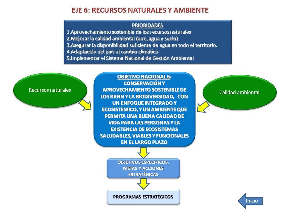 EJE 6: RECURSOS NATURALES Y AMBIENTE