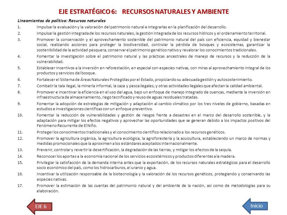 EJE ESTRATÉGICO 6: RECURSOS NATURALES Y AMBIENTE