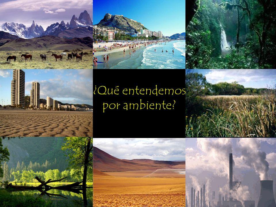 ¿Qué entendemos por ambiente