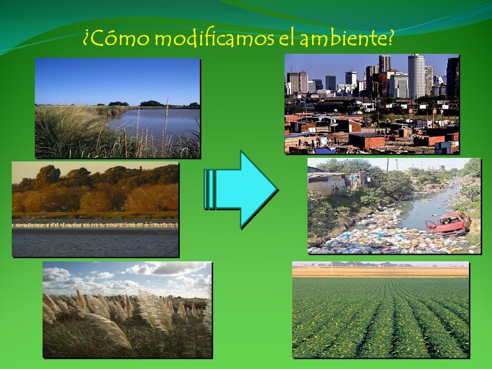 ¿Cómo modificamos el ambiente