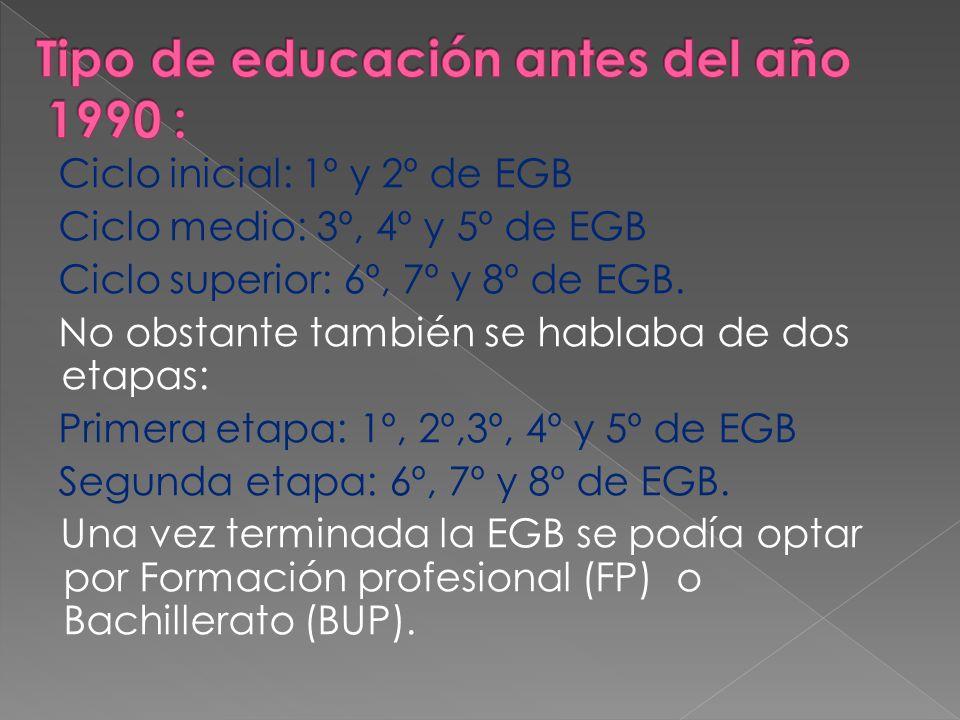 Tipo de educación antes del año 1990 :