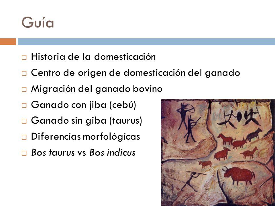 Guía Historia de la domesticación