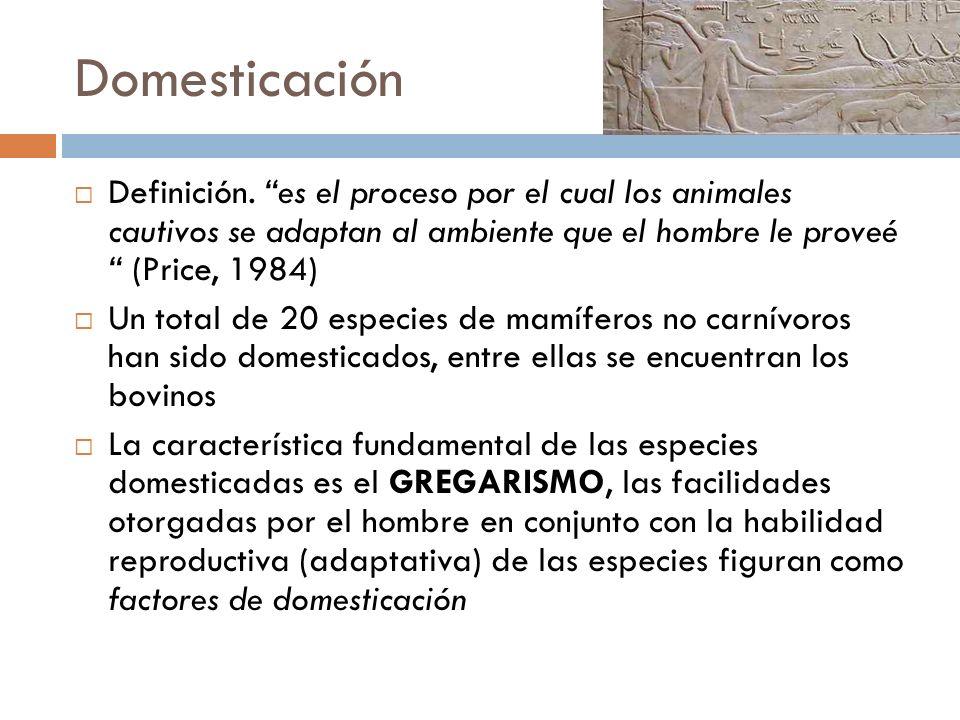 Domesticación Definición. es el proceso por el cual los animales cautivos se adaptan al ambiente que el hombre le proveé (Price, 1984)