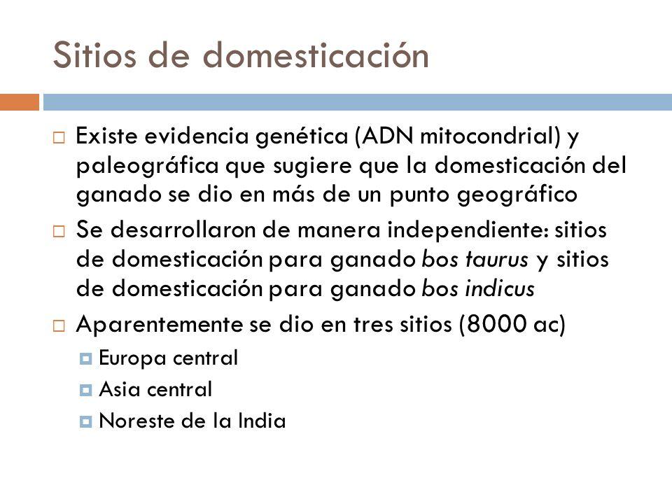 Sitios de domesticación