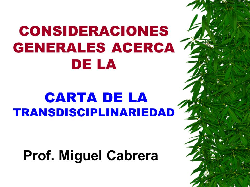 CONSIDERACIONES GENERALES ACERCA DE LA CARTA DE LA TRANSDISCIPLINARIEDAD