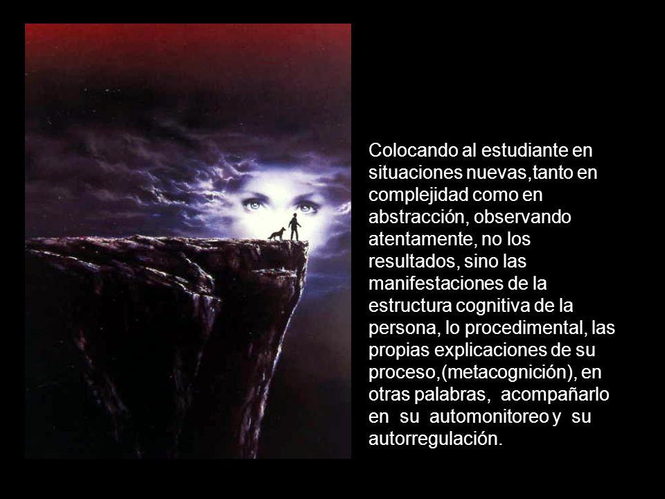 Colocando al estudiante en situaciones nuevas,tanto en complejidad como en abstracción, observando atentamente, no los resultados, sino las manifestaciones de la estructura cognitiva de la persona, lo procedimental, las propias explicaciones de su proceso,(metacognición), en otras palabras, acompañarlo en su automonitoreo y su autorregulación.