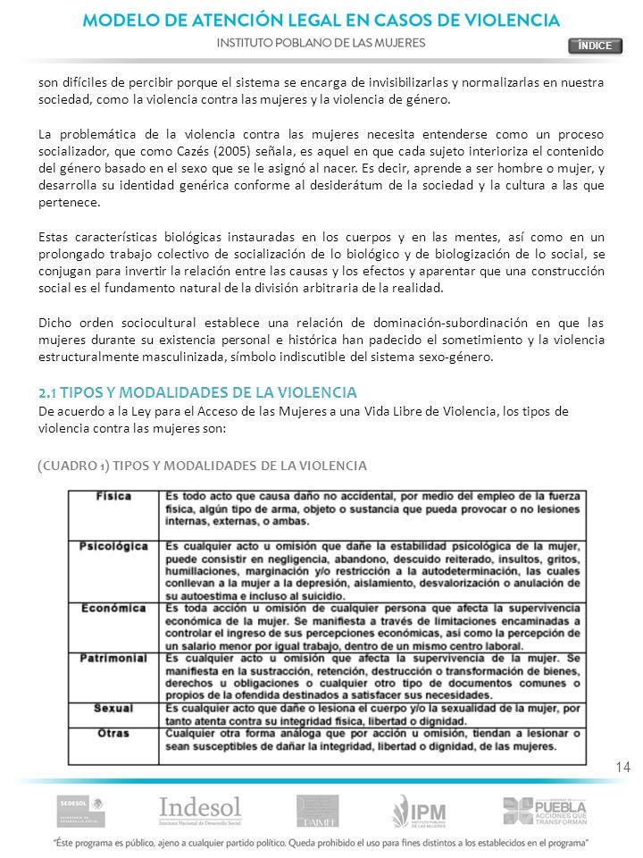 2.1 TIPOS Y MODALIDADES DE LA VIOLENCIA