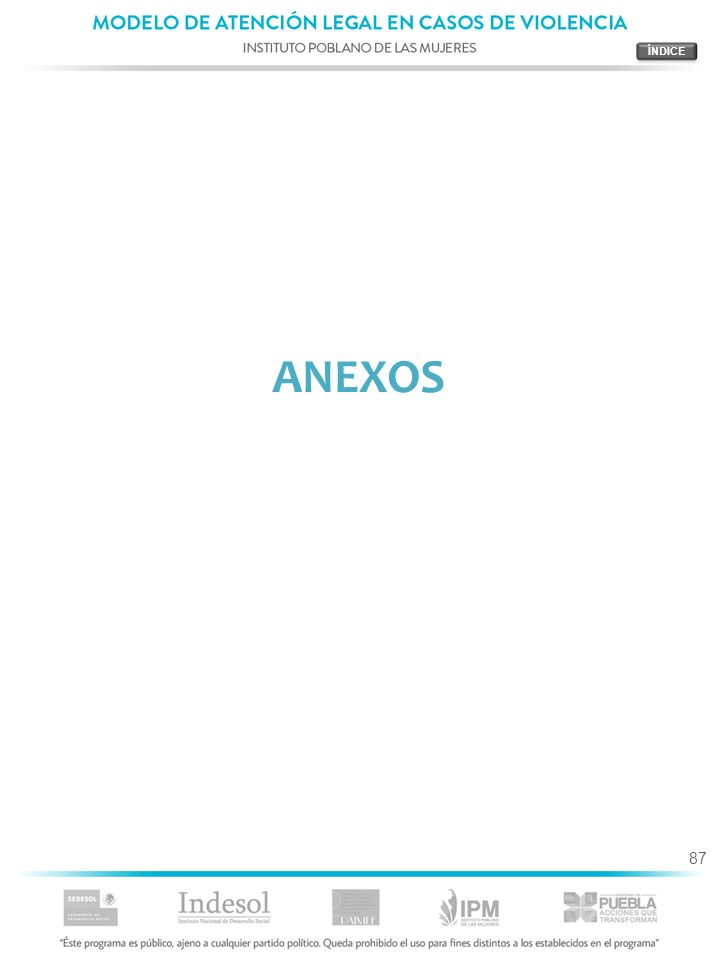 ÍNDICE ANEXOS