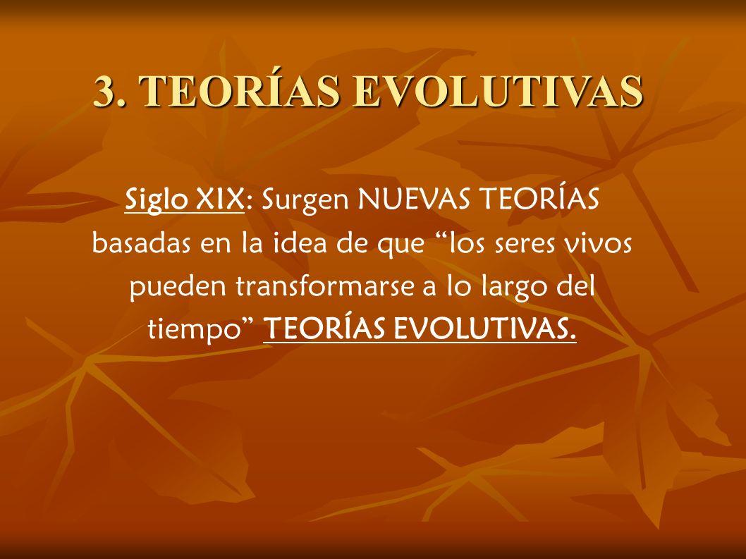 3. TEORÍAS EVOLUTIVAS