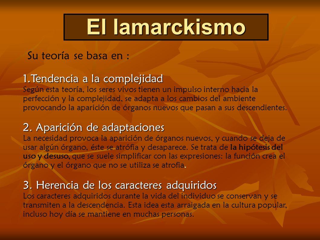 El lamarckismo 1.Tendencia a la complejidad