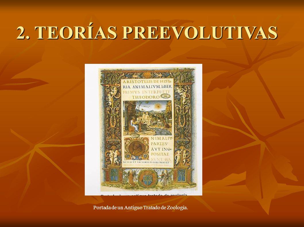 2. TEORÍAS PREEVOLUTIVAS