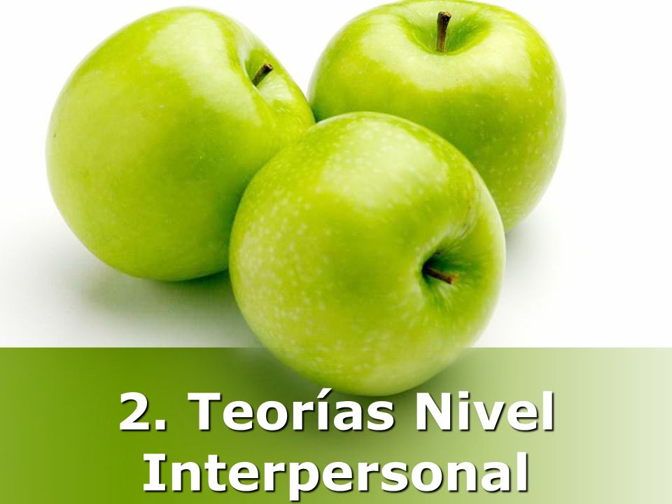 2. Teorías Nivel Interpersonal