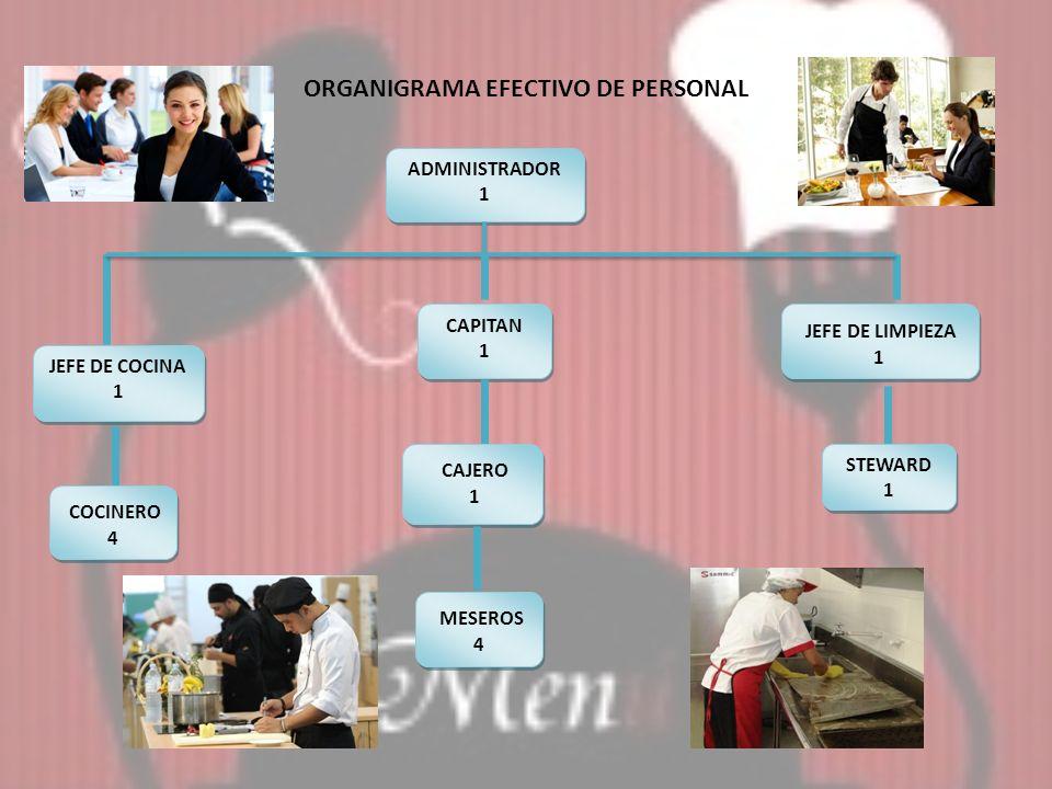 ORGANIGRAMA EFECTIVO DE PERSONAL
