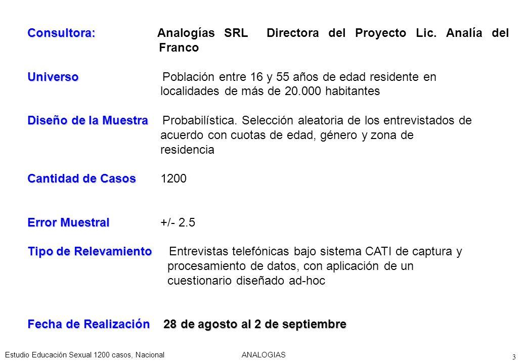 Consultora:. Analogías SRL Directora del Proyecto Lic. Analía del