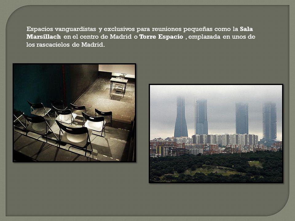 Espacios vanguardistas y exclusivos para reuniones pequeñas como la Sala Marsillach en el centro de Madrid o Torre Espacio , emplazada en unos de los rascacielos de Madrid.