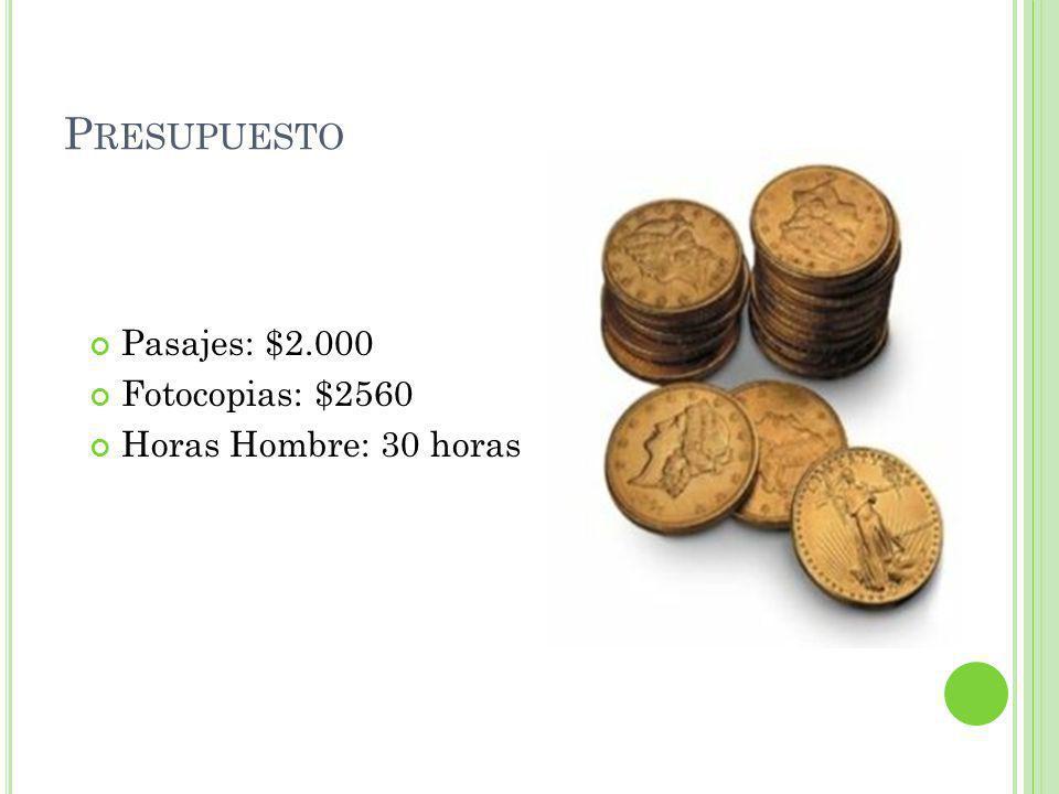 Presupuesto Pasajes: $2.000 Fotocopias: $2560 Horas Hombre: 30 horas