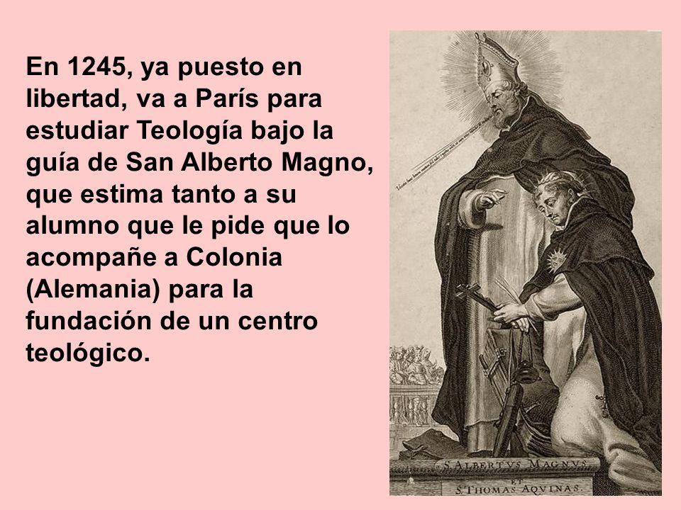 En 1245, ya puesto en libertad, va a París para estudiar Teología bajo la guía de San Alberto Magno, que estima tanto a su alumno que le pide que lo acompañe a Colonia (Alemania) para la fundación de un centro teológico.