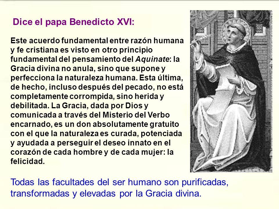 Dice el papa Benedicto XVI: