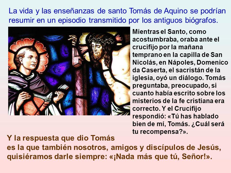 La vida y las enseñanzas de santo Tomás de Aquino se podrían resumir en un episodio transmitido por los antiguos biógrafos.