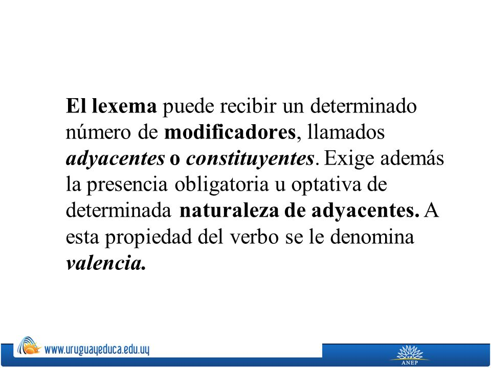 El lexema puede recibir un determinado número de modificadores, llamados adyacentes o constituyentes.