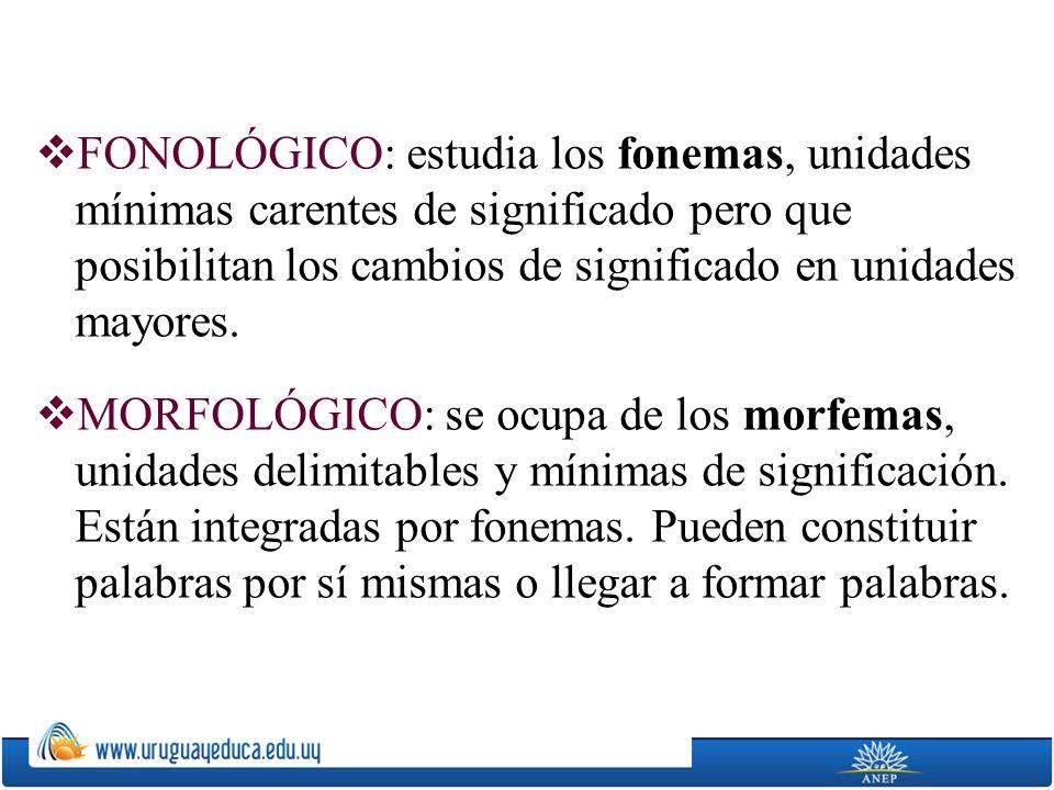 FONOLÓGICO: estudia los fonemas, unidades mínimas carentes de significado pero que posibilitan los cambios de significado en unidades mayores.