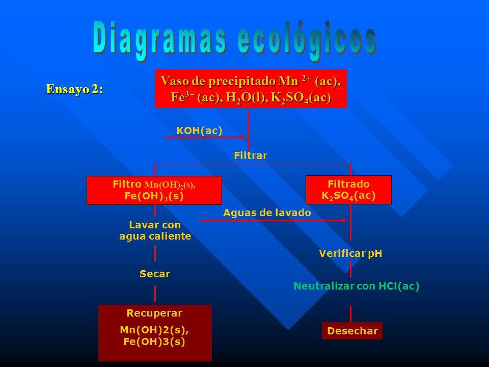Diagramas ecológicos Vaso de precipitado Mn 2+ (ac), Fe3+ (ac), H2O(l), K2SO4(ac) Ensayo 2: KOH(ac)