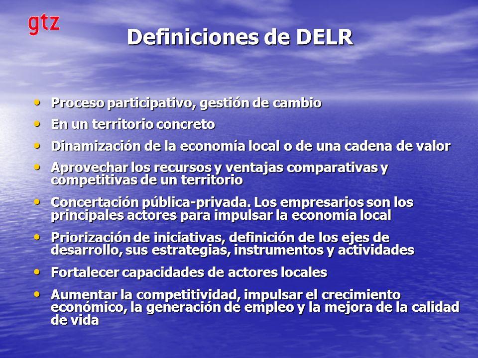 Definiciones de DELR Proceso participativo, gestión de cambio