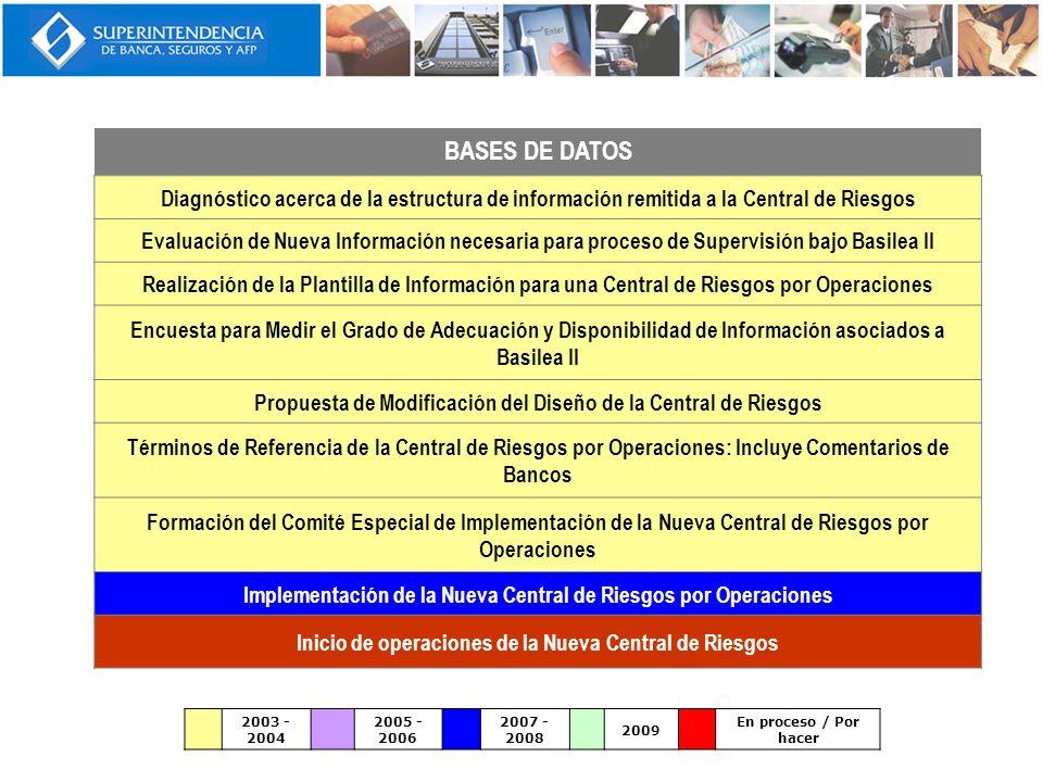 BASES DE DATOS Diagnóstico acerca de la estructura de información remitida a la Central de Riesgos.
