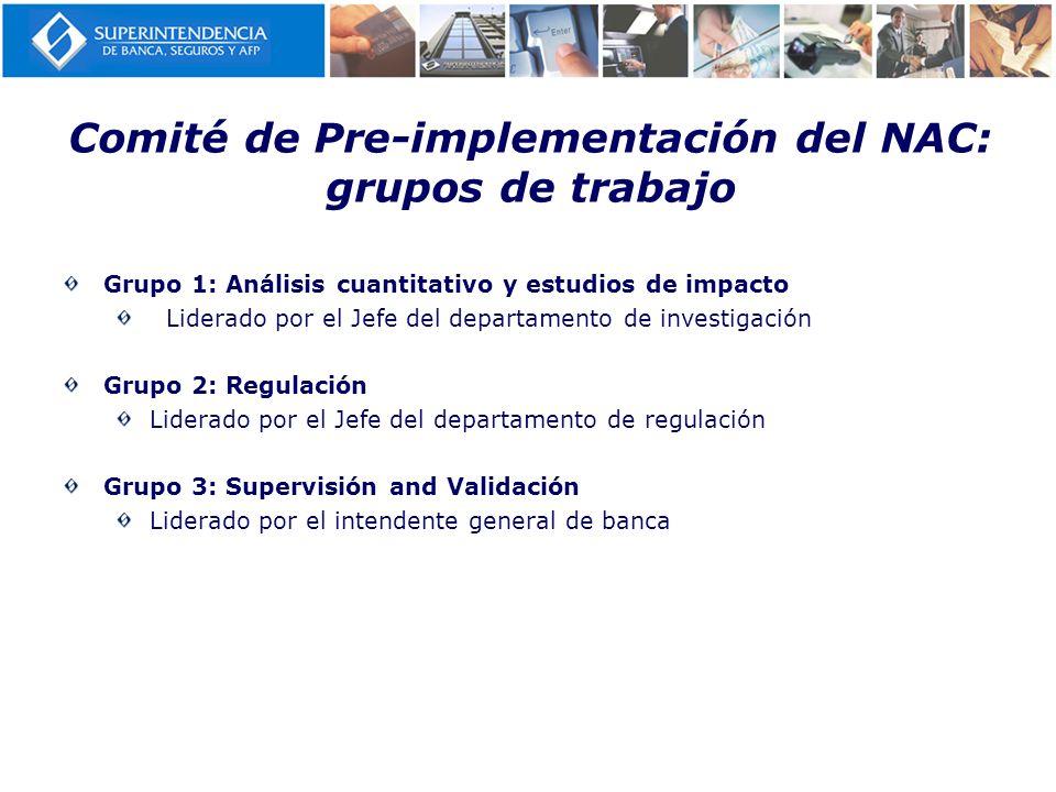 Comité de Pre-implementación del NAC: grupos de trabajo
