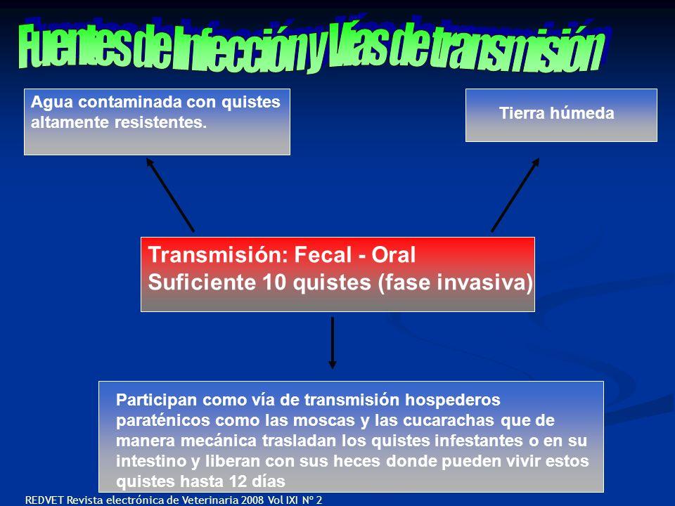 Fuentes de Infección y Vías de transmisión