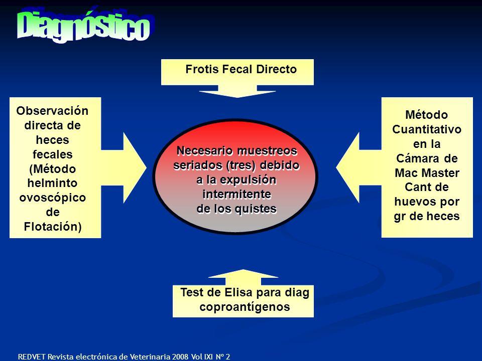 Diagnóstico Frotis Fecal Directo Observación Método directa de