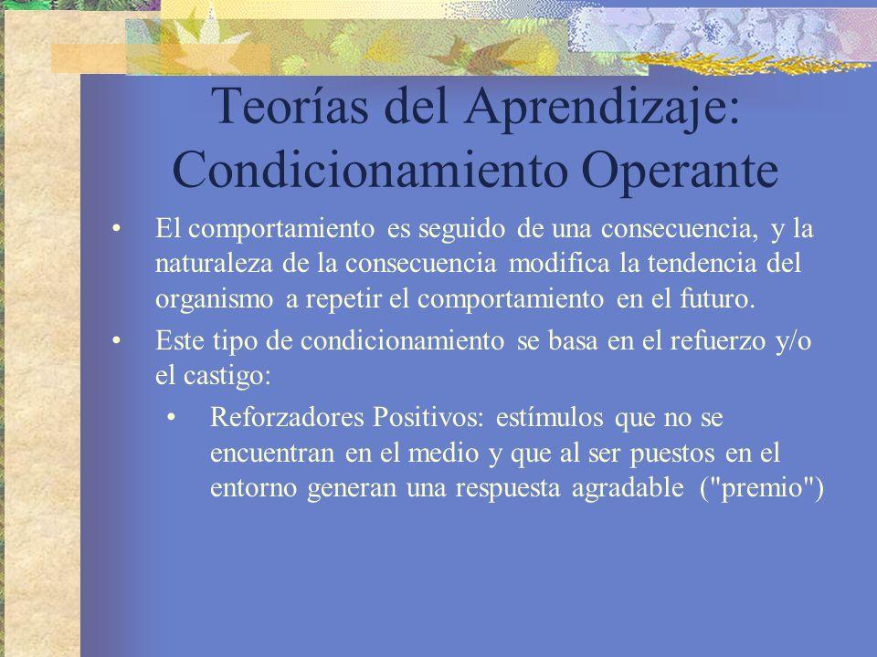 Teorías del Aprendizaje: Condicionamiento Operante