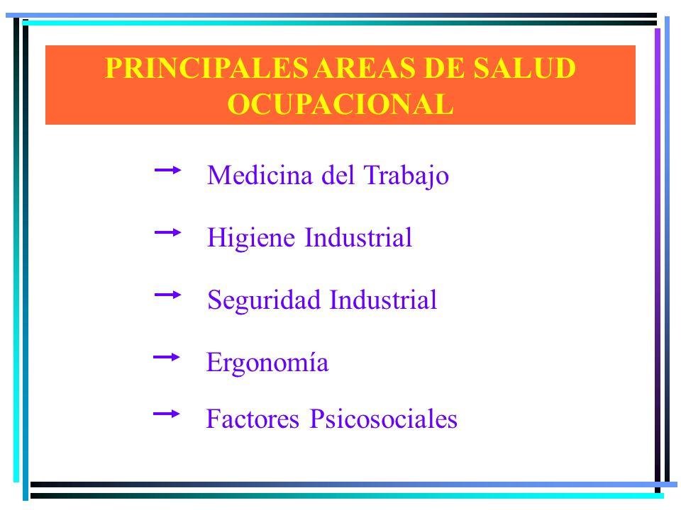 PRINCIPALES AREAS DE SALUD OCUPACIONAL
