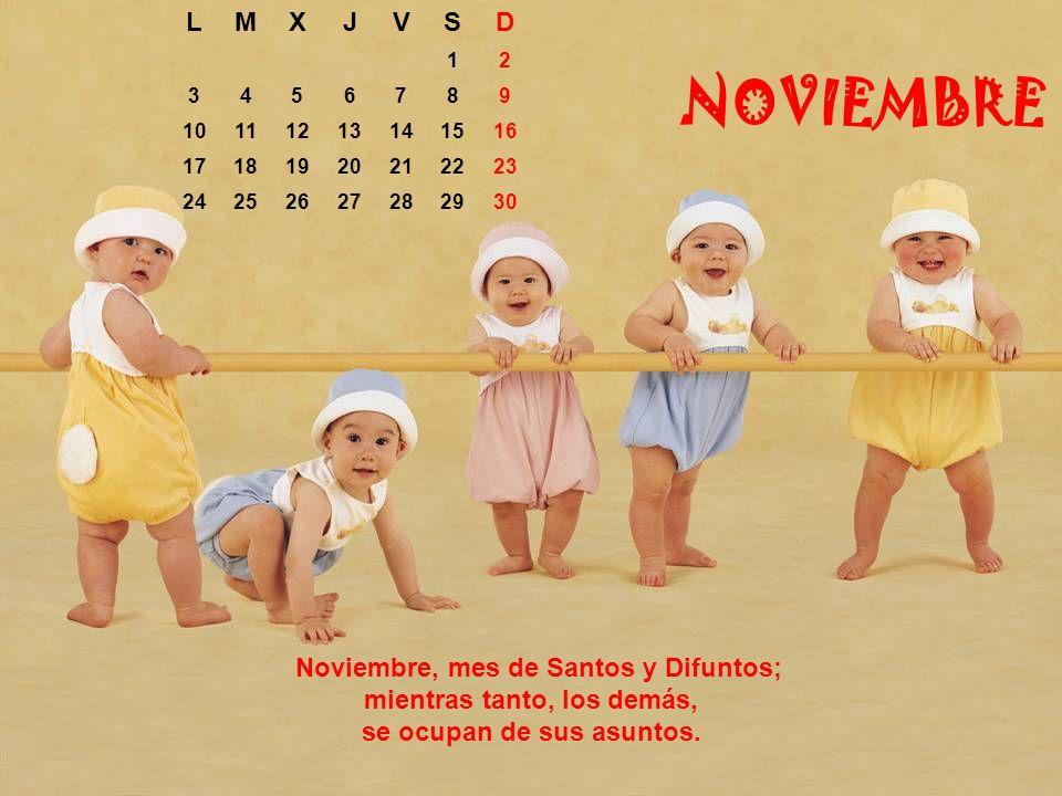 L M. X. J. V. S. D. 1. 2. 3. 4. 5. 6. 7. 8. 9. 10. 11. 12. 13. 14. 15. 16. 17.