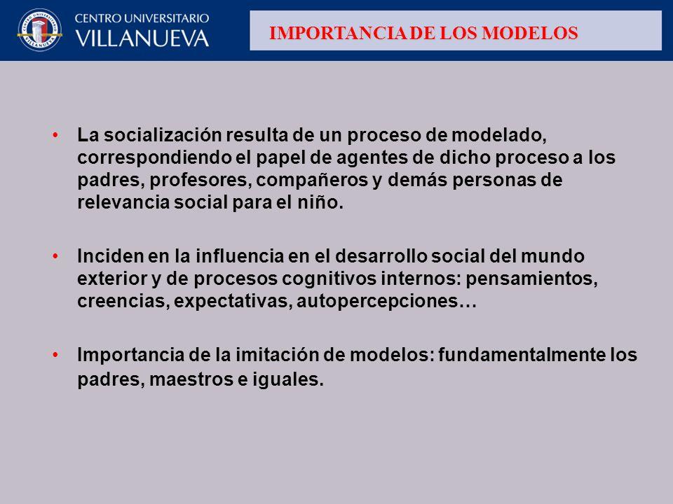 IMPORTANCIA DE LOS MODELOS