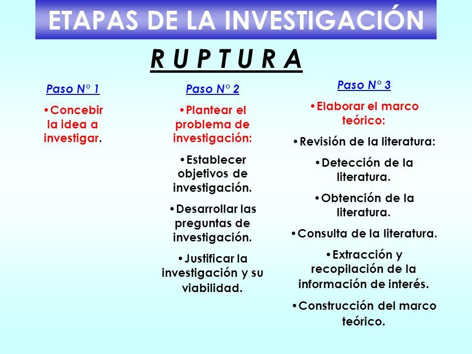 ETAPAS DE LA INVESTIGACIÓN R U P T U R A