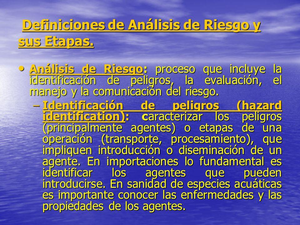 Definiciones de Análisis de Riesgo y sus Etapas.