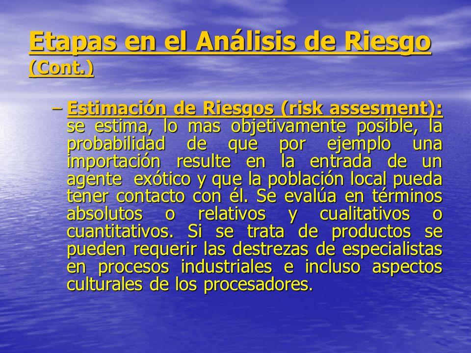 Etapas en el Análisis de Riesgo (Cont.)