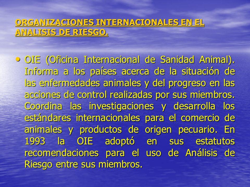 ORGANIZACIONES INTERNACIONALES EN EL ANALISIS DE RIESGO.