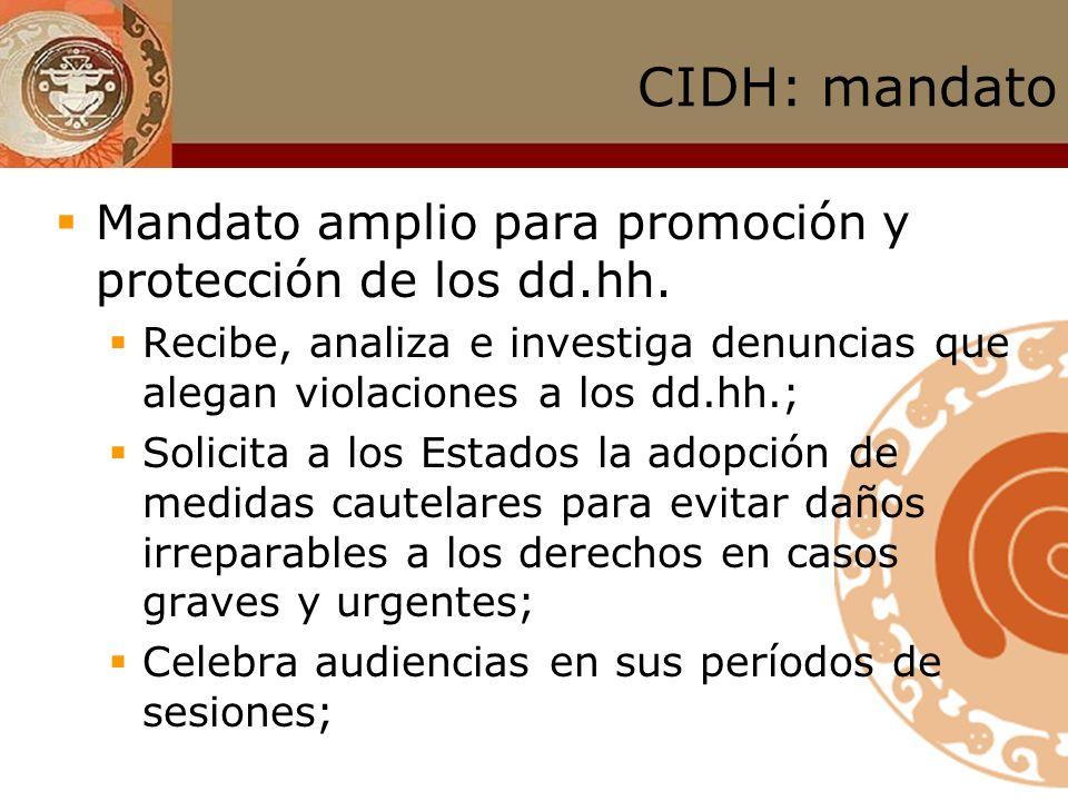 CIDH: mandato Mandato amplio para promoción y protección de los dd.hh.