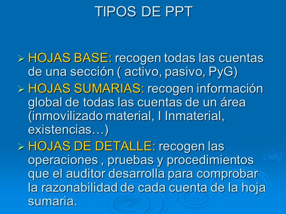 TIPOS DE PPT HOJAS BASE: recogen todas las cuentas de una sección ( activo, pasivo, PyG)