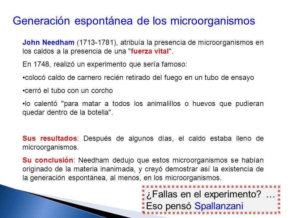 Generación espontánea de los microorganismos