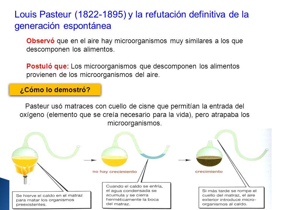 Louis Pasteur (1822-1895) y la refutación definitiva de la generación espontánea