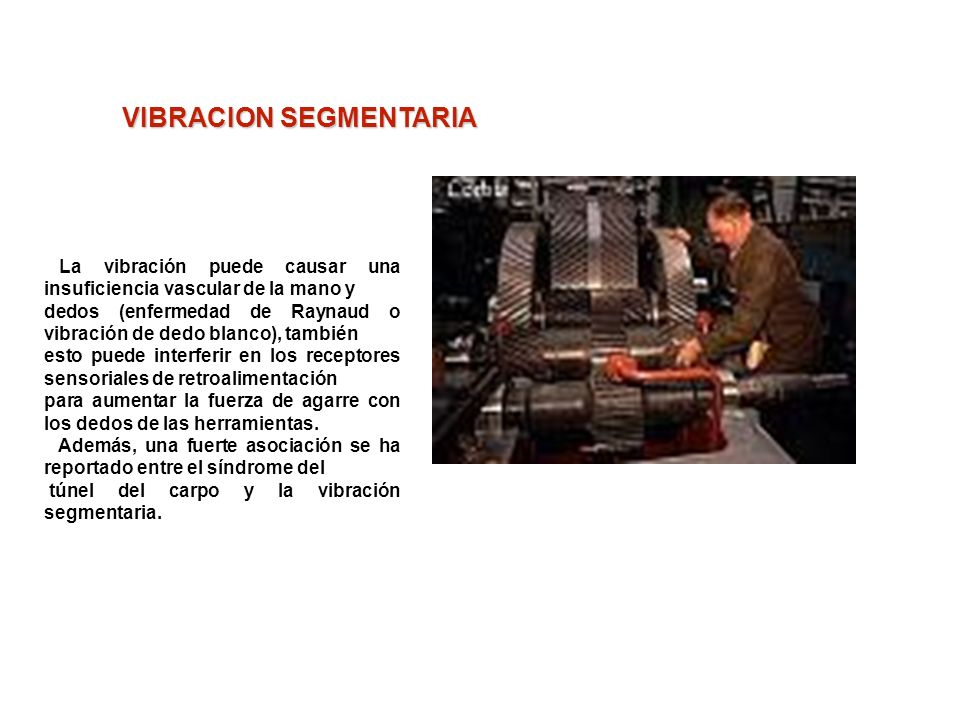 VIBRACION SEGMENTARIA